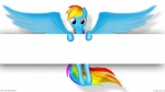 equine female feral friendship_is_magic hair hooves horse multi-colored_hair my_little_pony pony rainbow_dash_(mlp) reinkorn shadow simple_background tails wings   Rating: Safe  Score: 3  User: Reinkorn  Date: August 03, 2013