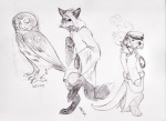 avian bird canine cloak clothing coat english_text facial_hair female feral fox hat lantur looking_at_viewer male mammal monochrome mustache mustelid nutwing otter owl pipe redwall semi-anthro sketch slushpuppy smoking sneaking text  Rating: Safe Score: 1 User: Occam Date: November 23, 2015
