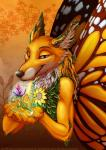 arthropod butterfly canine eosfoxx fairy forest fox insect magic mammal nordicfuzzcon tree wings   Rating: Safe  Score: 4  User: LostShadow  Date: March 13, 2015