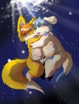 anthro bulge canine chibineco chubby clothing dog duo fox hug male male/male mammal overweight swimming thong tongue water  Rating: Questionable Score: 1 User: slyroon Date: February 18, 2011