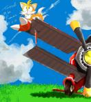 aircraft airplane canid canine fox hi_res invalid_color kapikapinodaih1 mammal miles_prower sonic_(series) tails_(disambiguation)Rating: SafeScore: 5User: elpaolodeldiabloDate: August 17, 2019