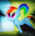 blue_fur cum equine female friendship_is_magic fur hair hi_res hooves howl_echoes mammal multi-colored_hair my_little_pony pegasus ponytail rainbow rainbow_dash_(mlp) tentacles wings young   Rating: Explicit  Score: 1  User: Howl_Echoes  Date: April 24, 2014