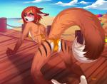 2015 all_fours anthro beach bikini blue_eyes blush camel_toe canine clothing female fox krells looking_back lukiri mammal pier sea seaside solo swimsuit water  Rating: Questionable Score: 29 User: Numeroth Date: August 02, 2015