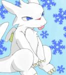 ambiguous_gender blue_eyes chibisuke claws crouching dragon dragon_drive fur furred_dragon scalie simple_background snowflake solo tongue tongue_out wings  Rating: Safe Score: 6 User: closet_furry Date: October 14, 2014