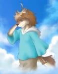 anthro brown_hair canine clothing cloud cloudscape hair kemono male mammal morenatsu nanafuse outside shirako sky solo wolf   Rating: Safe  Score: 8  User: Boku_no_Furfag  Date: November 22, 2013