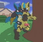 <3 anal anal_penetration animal_genitalia animal_penis anthro balls building duo eye_contact genitals grass happy happy_sex house legendary_pokémon looking_at_another looking_back lucario male male/male male_penetrated male_penetrating male_penetrating_male nintendo nude open_mouth outside penetration penis plant pokémon pokémon_(species) rvlis sex shrub standing standing_sex tree video_games zeraora