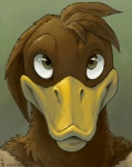 2013 amara_telgemeier avian bird brown_feathers charlie duck green_eyes looking_at_viewer male plain_background simple_background solo   Rating: Safe  Score: 5  User: tony311  Date: January 17, 2013