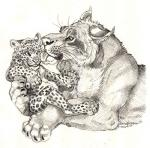 age_difference ambiguous_gender cub duo face_lick feline fur greyscale leopard licking_face mammal monochrome pencil_(artwork) simoon simple_background size_difference spots spotted_fur tongue tongue_out traditional_media_(artwork) whiskers white_background young  Rating: Safe Score: 3 User: treos Date: August 31, 2015