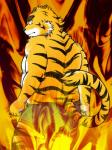 anthro ast back black_nose clothing eyebrows feline fire fur kemono looking_back male mammal pants solo stripes tiger warm_colors yellow_fur   Rating: Questionable  Score: 1  User: terminal11  Date: January 25, 2014