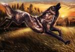 2018 ambiguous_gender black_fur black_lips black_nose brown_fur canine day digital_media_(artwork) feral fur grass mammal open_mouth outside paws sky solo tatchit teeth tongueRating: SafeScore: 12User: MillcoreDate: August 08, 2018