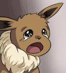 2019 ambiguous_gender crying crying_cat digital_media_(artwork) drawfag eevee feral gradient_background low_res meme nintendo open_mouth pokémon pokémon_(species) reaction_image simple_background solo tears video_gamesRating: SafeScore: 22User: TheRealKingKoopaDate: March 20, 2019