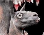 5:4 ambiguous_gender animated blood camelid cyriak digital_media_(artwork) group headshot_portrait infinity llama low_res mammal nightmare_fuel open_mouth portrait sharp_teeth side_view solo_focus teeth what