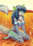 anthro bandeau blue_hair breasts canine clothed clothing detailed_background female green_eyes green_nose green_pawpads hair imanika kneeling mammal pawpads smile soloRating: SafeScore: 24User: MillcoreDate: September 25, 2017
