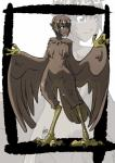 absurd_res animal_humanoid avian avian_humanoid blue_eyes brown_feathers brown_hair chest_tuft claws dark_skin digitigrade feathered_wings feathers female flat_chested hair harpy hi_res humanoid kukuruyoart_(artist) looking_at_viewer neck_tuft nude pointy_ears short_hair solo standing tail_feathers talons tuft wide_hips wings