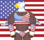 abs american_flag anthro avian beak biceps big_muscles bird briefs brown_body bulge cape clothing eagle feathers flag hicanyoumooforme male muscles shirt solo stars_and_stripes tank_top underwear united_states_of_america yellow_eyes   Rating: Safe  Score: 1  User: Rush123  Date: January 26, 2015