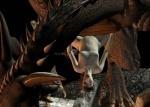 3d_(artwork) bestiality depraved3d digital_media_(artwork) dragon female female_on_feral feral human human_on_feral interspecies male male/female mammal raping sex watermark  Rating: Explicit Score: 1 User: dim-dragon Date: February 24, 2016