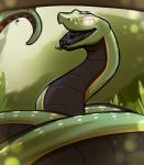 2015 black_scales black_skin black_tongue branch feral forked_tongue glowing glowing_eyes grass green_skin hypnosis jewelry looking_at_viewer male mind_control orange_skin padma paradise_tree_snake portrait reptile royalty_(artist) scalie smile snake solo tongue tongue_out white_eyes white_skin  Rating: Safe Score: 4 User: TheGreatWolfgang Date: September 04, 2015