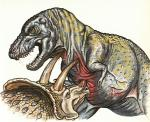blood claws dinosaur fight horn open_mouth stab teeth triceratops tyrannosaurus_rex wounded  Rating: Questionable Score: 0 User: xenowyvern Date: October 05, 2015