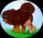 ass_to_ass canine chow_chow cock_hanging corgi dog duo female feral feral_on_feral knot knotting madammoo male mammal sex simple_background size_differenceRating: ExplicitScore: 1User: slyroonDate: June 22, 2017