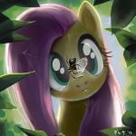 arachnid arthropod butterfly daruqe equine female fluttershy_(mlp) friendship_is_magic fur green_eyes hair insect mammal my_little_pony outside pegasus pink_hair spider web wings yellow_fur   Rating: Safe  Score: 16  User: Lunaz  Date: April 12, 2014