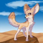 2014 ambiguous_gender canine desert fennec feral fox mammal outside rukifox solo tongue tongue_out   Rating: Safe  Score: 2  User: tony311  Date: April 18, 2014