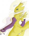 anthro argen-fur blue_eyes breasts canine clothing digimon elbow_gloves female fox fur gloves mammal nipples pussy renamon solo white_fur yellow_fur  Rating: Explicit Score: 12 User: My_Lil_p0rny Date: October 24, 2012