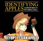 apple applejack_(mlp) blonde_hair captain_obvious cowboy_hat english_text female freckles friendship_is_magic fruit hair hat human humanized image_macro mammal meme mercenario1945 my_little_pony parody sallymon solo text   Rating: Safe  Score: 36  User: mercenario1945  Date: October 19, 2013
