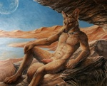 2015 abs animal_genitalia anthro brown_eyes brown_fur canine canine_penis cave claws collar desert erection fur grass jackal knot lake looking_at_viewer male mammal moon nude outside penis presenting rock rukis shaded solo teasing   Rating: Explicit  Score: 20  User: TheGreatWolfgang  Date: January 16, 2015