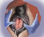anus blue_fur bovine canine cattle disembodied_hand duo fox fur krystal mammal nintendo nude pussy pussy_juice spread_pussy spreading star_fox ungulatr unknown_species video_games white_fur  Rating: Explicit Score: 38 User: Peekaboo Date: July 19, 2015