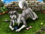 """2015 anthro canine collar darkicewolf dog fur garden male mammal nude outside penis realistic smile solo toy tyke  Rating: Explicit Score: 11 User: *Sellon* Date: June 29, 2015"""""""