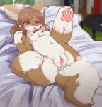 2014 anthro bed black_nose blush breasts brown_hair canine chest_tuft chipar clitoris erect_nipples feet female fur gaping gaping_pussy hair half-closed_eyes hi_res kemono long_hair looking_at_viewer lying mammal nipples nude pawpads paws plump_labia pussy pussy_juice small_breasts solo spread_legs spread_pussy spreading tongue tuft  Rating: Explicit Score: 14 User: Xenochilla Date: June 10, 2015