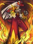 2014 3_fingers blaziken blue_eyes clefdesoll digital_drawing_(artwork) digital_media_(artwork) feathers fire looking_at_viewer nintendo pokémon red_feathers signature solo video_games white_feathers yellow_feathers yellow_sclera