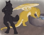 anthro balls black_fur canine dragon drinking duo feathered_wings feathers feral fur looking_back male mammal sabretoothed_ermine scalie shadow_wolf sheath spihanor water wings wolf   Rating: Explicit  Score: 20  User: ShaDoW_WolF_  Date: March 24, 2015