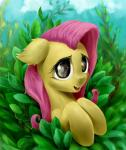 2014 equine fangs female feral fluttershy_(mlp) friendship_is_magic fur hair long_hair mammal my_little_pony open_mouth outside pink_hair rallerae solo yellow_fur   Rating: Safe  Score: 5  User: lemongrab  Date: April 09, 2014