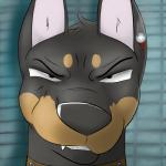 black_fur blood brown_fur bullet_wound canine doberman dog fur male mammal portrait sneer solo sparklepaws wounded   Rating: Questionable  Score: 1  User: Sparklepaws  Date: March 03, 2015
