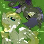 2013 blonde_hair blue_eyes cloud_skipper_(mlp) duo equestria-prevails equine eye_contact fan_character feathered_wings feathers female feral friendship_is_magic grass hair hi_res long_hair lying male mammal membranous_wings midnight_blossom my_little_pony pegasus royal_guard_(mlp) shadow small_wings smile white_feathers wings yellow_eyes