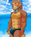 abs ape baboon beach blood blush drooling fur googles male mammal monkey nipples nosebleed primate pubes saliva seaside solo swimsuit   Rating: Questionable  Score: 4  User: Autumn~PrimateSky  Date: April 02, 2014