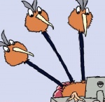 0v0 ambiguous_gender avian beak bird bludragoon claws computer dodrio feathers feral humor i_can't_fap_to_this low_res nintendo o_o ovo pokéball pokémon reaction_image shocked simple_background solo video_games what white_background