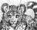 black_and_white black_fur cub digital_drawing_(artwork) digital_media_(artwork) feline feral fur leopard looking_at_viewer low_res mammal monochrome nude ringed_tail round_ears simoon sketch whiskers young  Rating: Safe Score: 3 User: treos Date: August 31, 2015