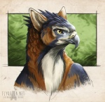 2015 ambiguous_gender avian beak bird blue_feathers gryphon red_feathers rotarr solo yellow_eyes   Rating: Safe  Score: 7  User: TonyLemur  Date: March 25, 2015
