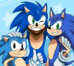 2014 anthro blue_hair green_eyes group hair hedgehog looking_at_viewer male one_eye_closed sega smile sonic_(series) sonic_boom sonic_the_hedgehog square_crossover sssonic2 wink   Rating: Safe  Score: 6  User: Robinebra  Date: February 08, 2014