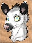 anthro blue_eyes female fur grey_markings holly_massey looking_at_viewer mammal marsupial opossum pink_nose seux simple_background solo teeth virginia_opossum whiskers white_fur   Rating: Safe  Score: 0  User: The Dog In Your Guitar  Date: May 14, 2007
