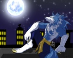 """abs anthro barefoot belt biceps big_feet big_hands black_nose black_skin blue_fur blue_hair building canine city claws clothed clothing crouching darkstalkers fangs fist fluffy frown fur glowing hair half-dressed jon_talbain legs_up light looking_up male mammal manly melee_weapon moon muscles night nunchaku outside pants pecs pose raised_arm raised_leg shadow sharp_teeth shiny sitting sky solo spread_legs spreading squint star stargazing starry_sky teeth toe_claws toned topless video_games wargreymon43 weapon were werewolf white_fur wolf yellow_eyes  Rating: Safe Score: 3 User: WiiFitTrainer Date: May 18, 2013"""""""