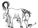 black_and_white duo equine female horse human mammal monochrome penis pussy simple_background unbirthing unknown_artist vore white_background  Rating: Explicit Score: -1 User: RemusShepherd Date: December 18, 2011