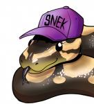 2015 ambiguous_gender baseball_cap beady_eyes black_eyes cute digital_media_(artwork) feral forked_tongue grey_tongue half-length_portrait hat lol_comments meme mostly_nude portrait purple_headwear python reptile scalie simple_background smile snake solo tongue tongue_out unknown_artist white_background