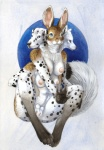 anthro arctic_fox areola big_ears black_fur black_pawpads blue_eyes breasts brown_fur cadmiumtea canine cerebus_like chest_tuft chymera dalmatian digitigrade dog fluffy_tail fox fur grey_fur hare herm intersex lagomorph mammal multi_breast multi_head multi_limb multi_penis multi_pussy multiple_arms navel nipples pawpads paws penis pubes pussy sheath sitting solo spots tuft what_has_science_done white_fur   Rating: Explicit  Score: 11  User: TheFappingOne  Date: November 16, 2014