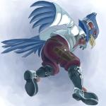 anthro avian beak bird blue_eyes blue_feathers boots clothing falco_lombardi feathers footwear headphones headset jacket male nintendo scarf simple_background solo star_fox tail_feathers unknown_artist video_games