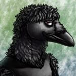 1:1 2017 anthro avian bags_under_eyes beak bird black_clothing black_feathers black_shirt black_topwear brown_eyes clothed clothing conditional_dnp corvid corvus_(genus) crow digital_media_(artwork) feathers male ratte shirt solo tank_top topwear