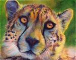 2012 abstract_background ambiguous_form ambiguous_gender black_markings black_nose cheetah countershading feline fur green_background looking_at_viewer mammal markings novawuff orange_eyes orange_fur portrait reaction_image simple_background solo spots white_countershading yellow_furRating: SafeScore: 7User: SnowWolfDate: January 30, 2018