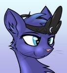 2014 blue_eyes blue_fur blue_hair cat crown dileak feline female friendship_is_magic fur hair mammal my_little_pony princess_luna_(mlp) solo species_swap   Rating: Safe  Score: 5  User: Somepony  Date: April 18, 2014